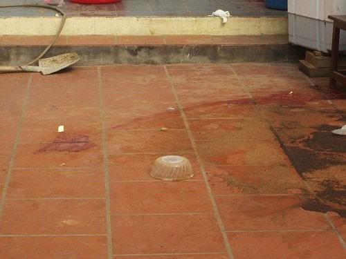 Vụ cả nhà bị sát hại: Bị đâm chết khi truy đuổi trộm - ảnh 2