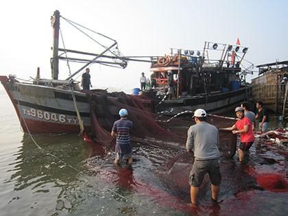 Nổ tàu cá, 8 người bị thương - ảnh 2