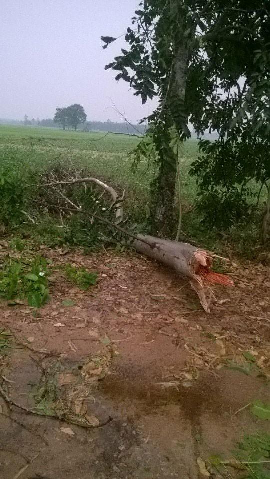 Lốc xoáy kinh hoàng làm 320 nhà dân tốc mái - ảnh 4