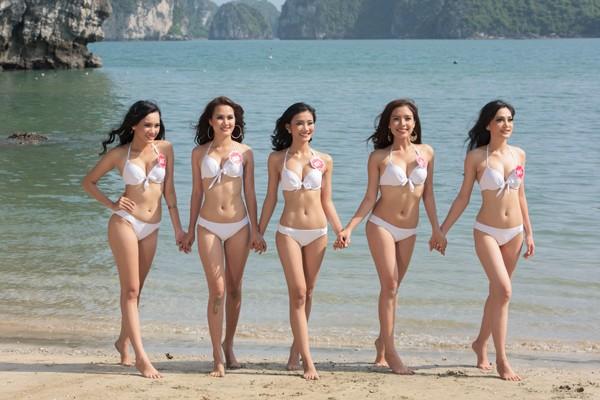 Người đẹp diện bikini hút hồn trong những shot hình nóng bỏng - ảnh 5