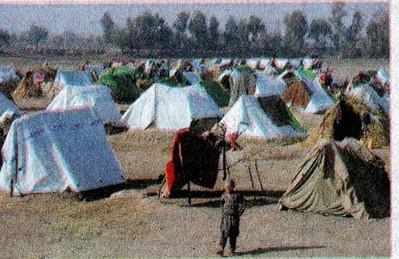 Vào chiến trường Afghanistan' - Kỳ cuối: Thoát chết vì… thiếu tiền - ảnh 3
