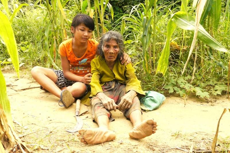 Cụ bà 90 tuổi lưng còng, tóc bạc vẫn trồng ngô tỉa bắp - ảnh 5