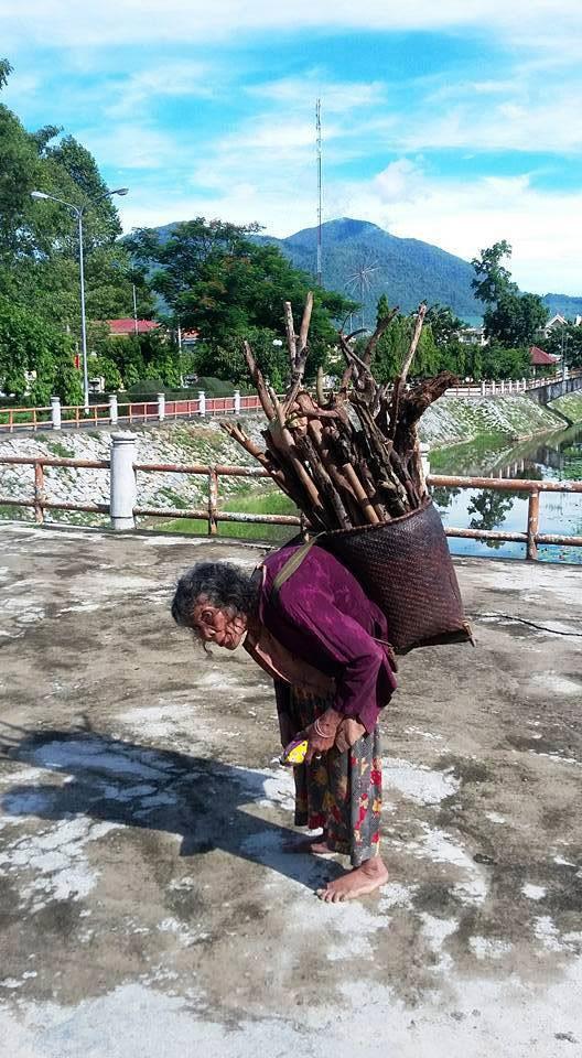Cụ bà 90 tuổi lưng còng, tóc bạc vẫn trồng ngô tỉa bắp - ảnh 1