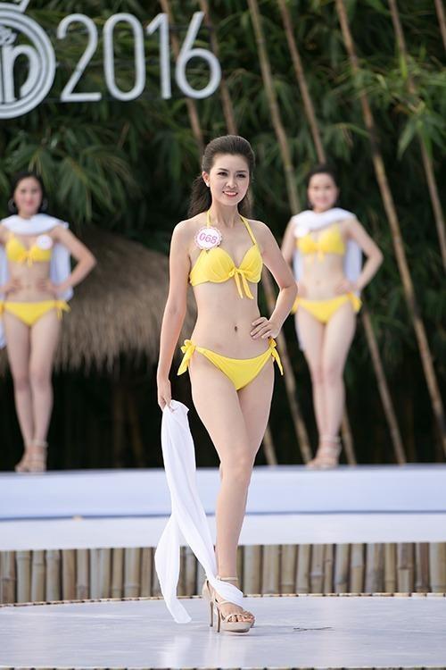 Vũ Thị Vân Anh