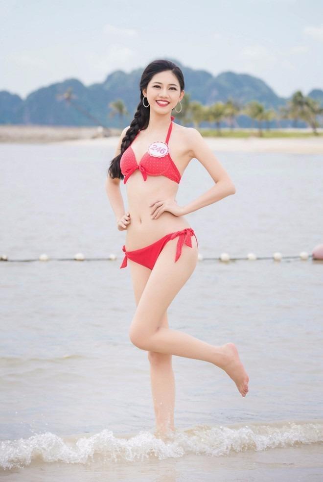Ngô Thanh Thanh Tú cao 180 cm, nặng 58 kg, số đo 3 vòng 81-62-99. Cô là em gái Á hậu Hoàn vũ Ngô Trà My. Cô là một trong hai người đẹp cao nhất cuộc thi.