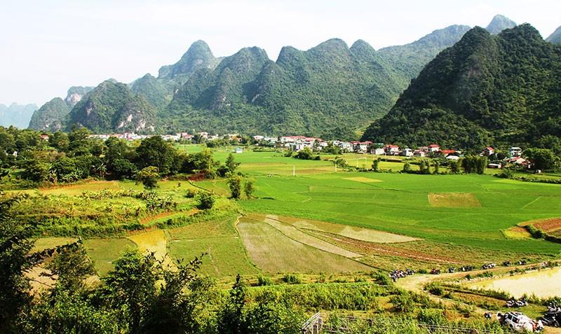 Về thăm nơi mẹ con anh Kim Đồng yên nghỉ - ảnh 2