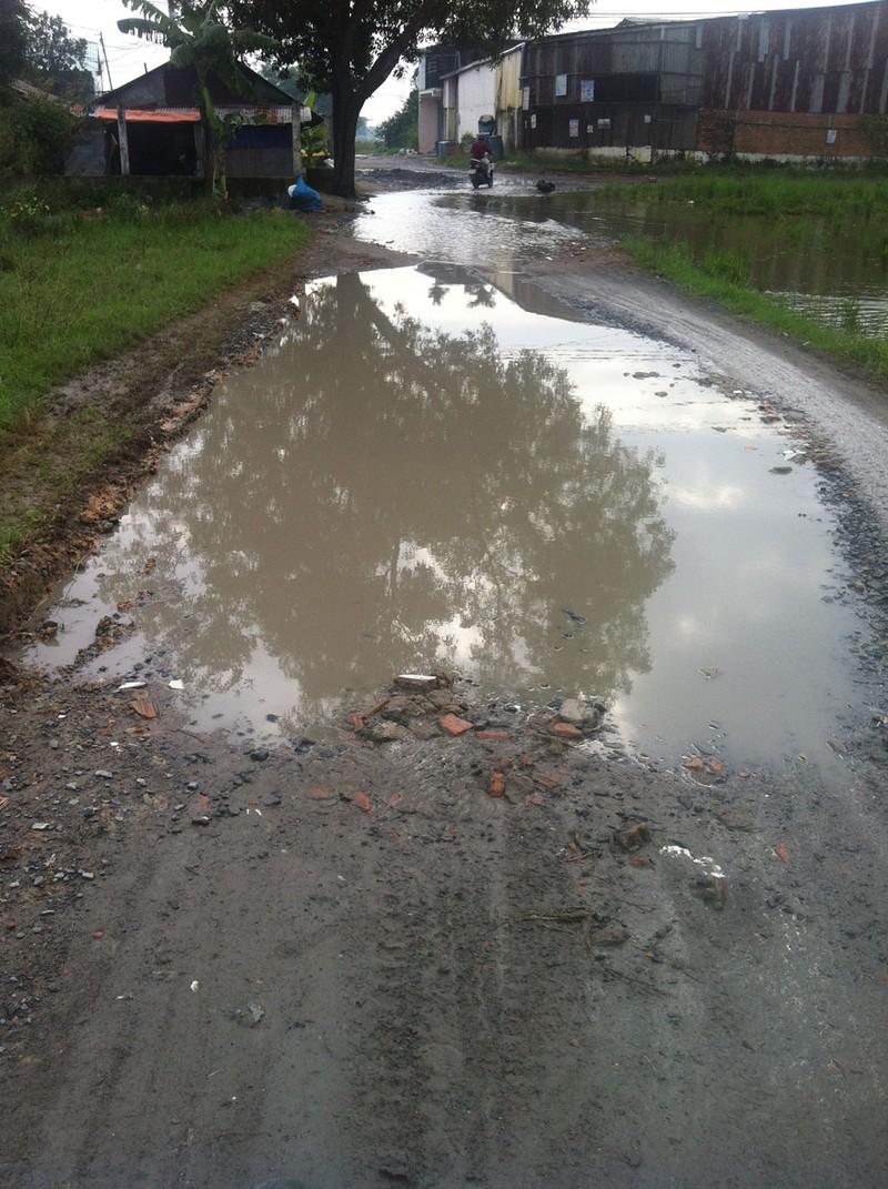 Tết này đã có nước sạch, đường mới vui xuân - ảnh 11