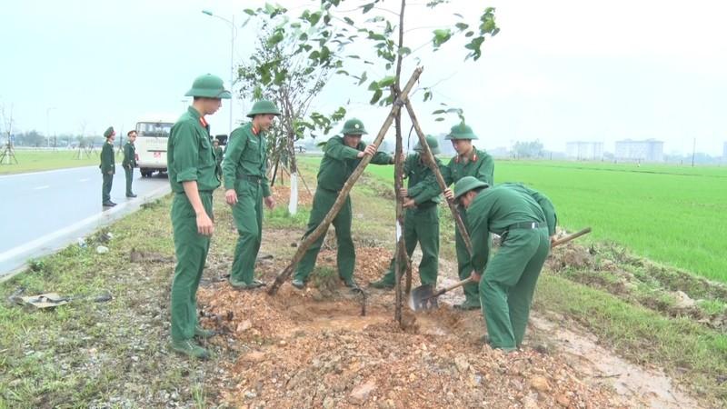 Huế phát động trồng cây đầu xuân Đinh Dậu - ảnh 3