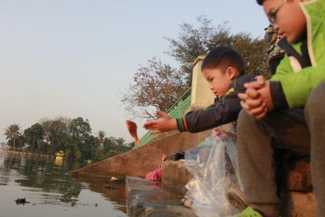 Kết quả hình ảnh cho thả cá chép