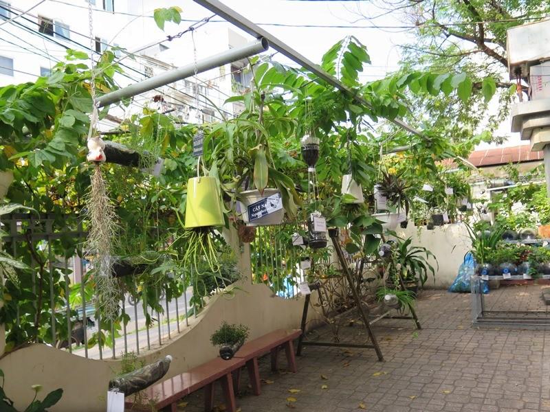 Lạ mắt vườn cây từ vật dụng tái chế của học sinh lớp 8  - ảnh 10