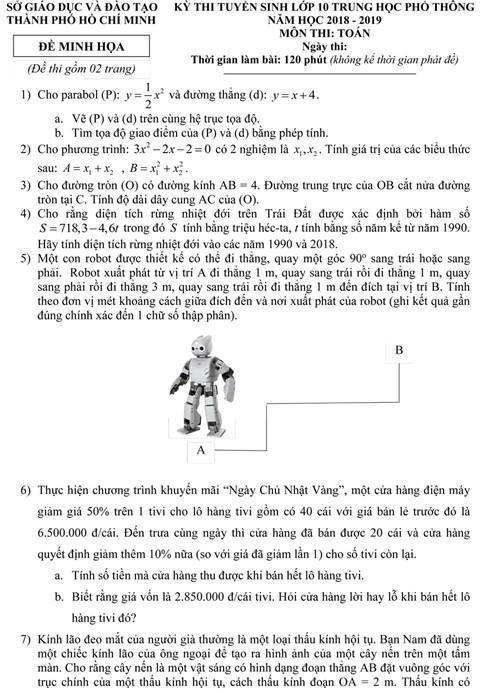 Sở GD&ĐT TP.HCM công bố đề thi minh họa lớp 10 - ảnh 1