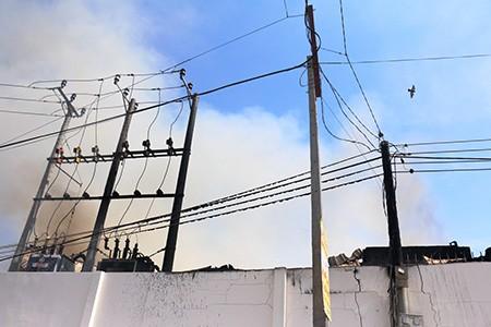 Cháy công ty thủy sản, mất trắng hàng trăm tấn cá - ảnh 3