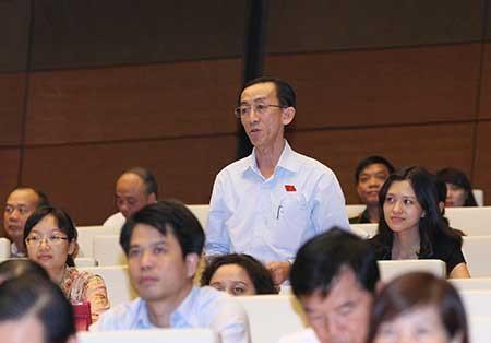 Dự án sân bay Long Thành: Bay bổng lạc quan lẫn ủng hộ dè dặt - ảnh 1