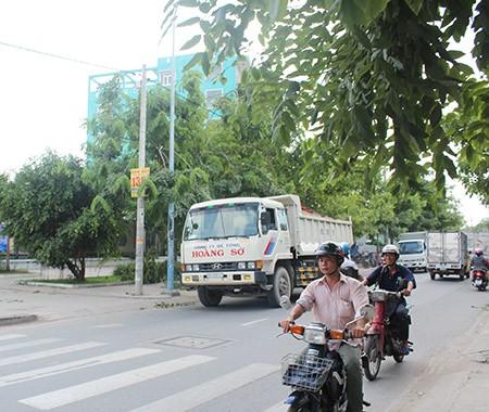 Xe ben, xe bồn, container ngang nhiên đi vào đường cấm - ảnh 9