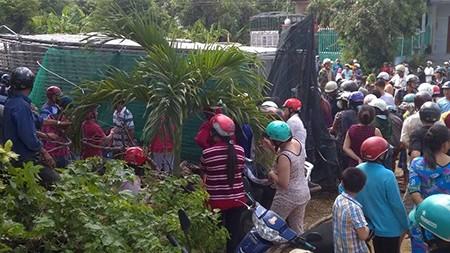 Xe tải chở vịt bị lật, người dân mua vịt ủng hộ tài xế - ảnh 2