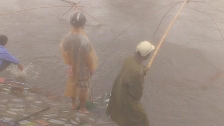 Người Hà Nội 'nô nức' ra sông bắt cá sau cơn mưa lớn  - ảnh 4