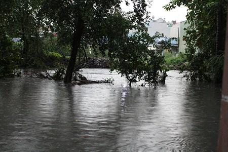 Mưa lớn kèm gió giật mạnh, Sài Gòn lại ngập nặng - ảnh 2