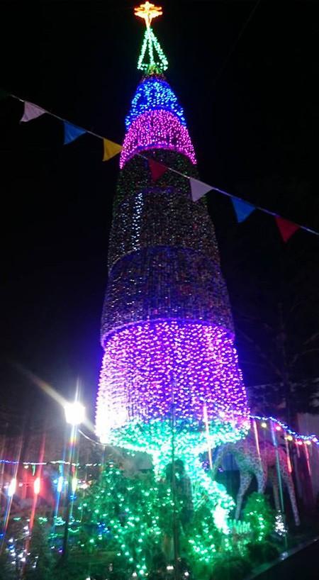 Độc đáo cây thông Noel 18 m làm từ hàng ngàn vỏ lon - ảnh 10
