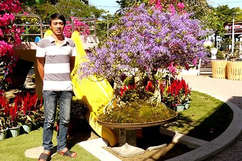 Ngỡ ngàng ngắm cây mai lạ có hoa màu... tím - ảnh 6