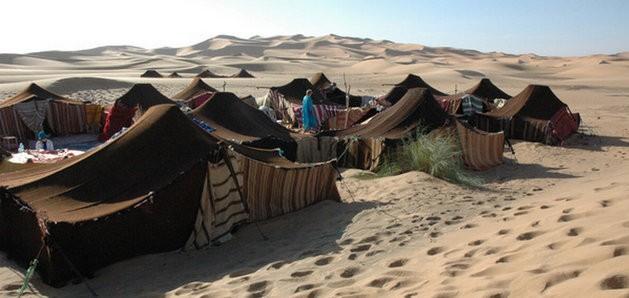 CĐV sẽ ở 'khách sạn ngàn sao' giữa sa mạc tại World Cup 2022 - ảnh 1
