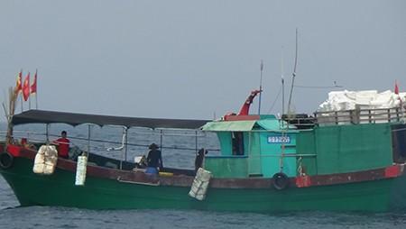Tàu cá Trung Quốc liều lĩnh vào rất sâu vùng biển Việt Nam đánh bắt - ảnh 2