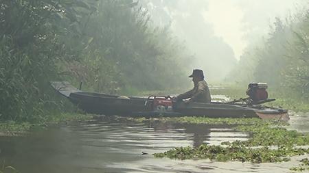 Đám cháy 13,8 ha rừng U Minh Hạ đã được khống chế - ảnh 3