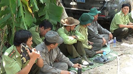 Đám cháy 13,8 ha rừng U Minh Hạ đã được khống chế - ảnh 5