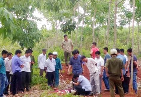 Nam sinh viên bị đâm chết trong vườn cao su - ảnh 1