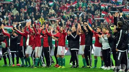 Nhận định bảng F Euro 2016: Bồ Đào Nha và phần còn lại - ảnh 4