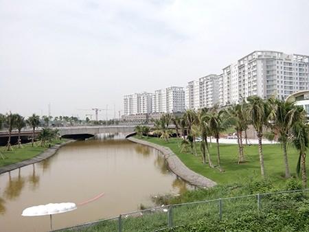 Nước bị nhiễm mặn, không thể dùng tưới cây ở Thủ Thiêm - ảnh 2