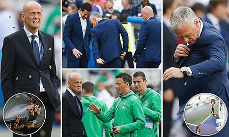 Ronaldo bật khóc, Eder hóa người hùng, Bồ Đào Nha vô địch Euro 2016 - ảnh 65