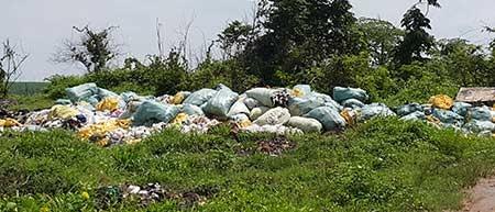 Chủ đất chứa rác độc ở Đồng Nai nói gì? - ảnh 2