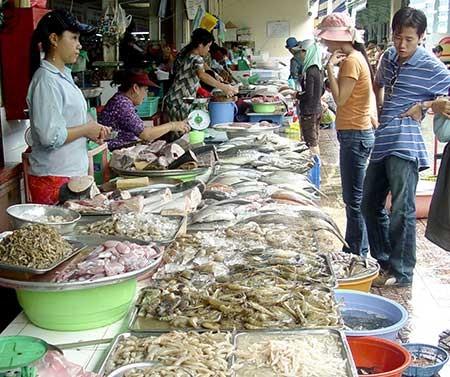 Cần công khai 808 sản phẩm thủy sản trái phép - ảnh 1