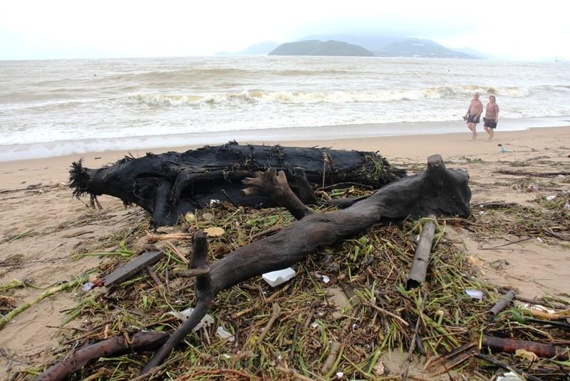 Bãi biển Nha Trang ngập rác trong những ngày mưa - ảnh 6