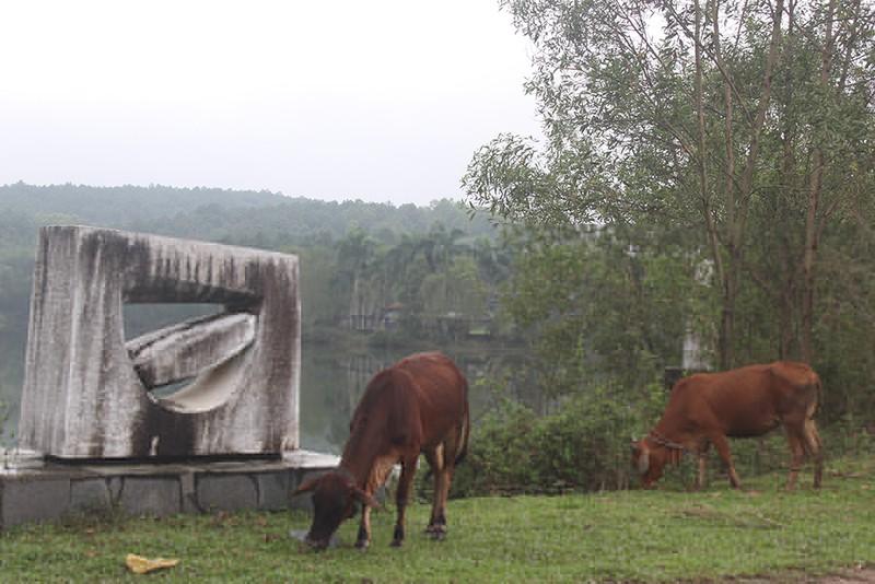Chùm ảnh: Công viên nước 70 tỉ bỏ hoang từng lên báo Mỹ - ảnh 8
