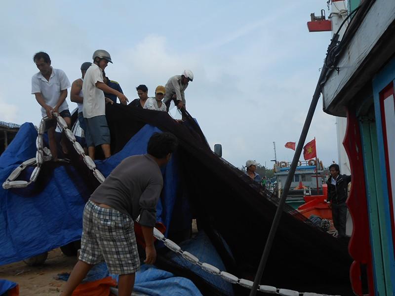 Hàng trăm tàu đánh cá bắt đầu mùa biển mới ra Hoàng Sa - ảnh 2