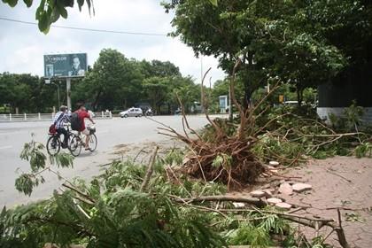 Người Hà Nội vẫn chưa hết bàng hoàng sau cơn bão - ảnh 4