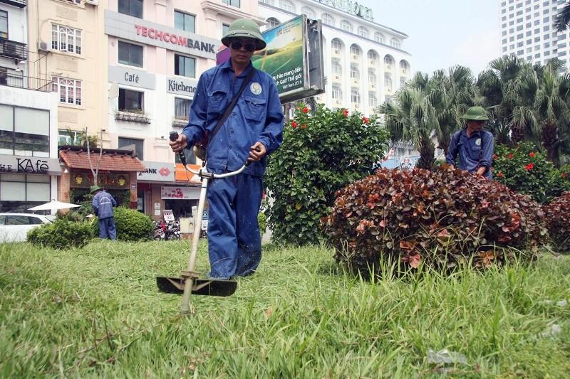Hà Nội cắt tỉa cỏ trở lại sau 3 tháng 'án binh' - ảnh 4