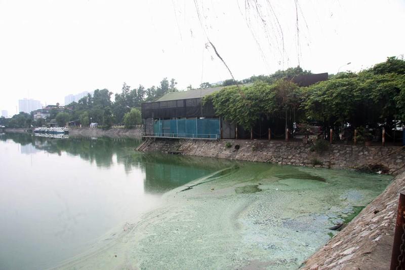 Hồ nước bốc mùi hôi thối, người dân 'cố thủ' trong nhà - ảnh 1