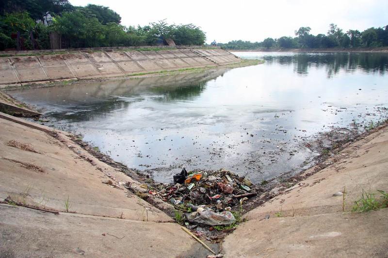 Cá lại chết nhiều ở hồ Linh Đàm - ảnh 11
