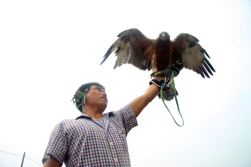 Hào hứng với hội thi chim ở Hà Nội - ảnh 7