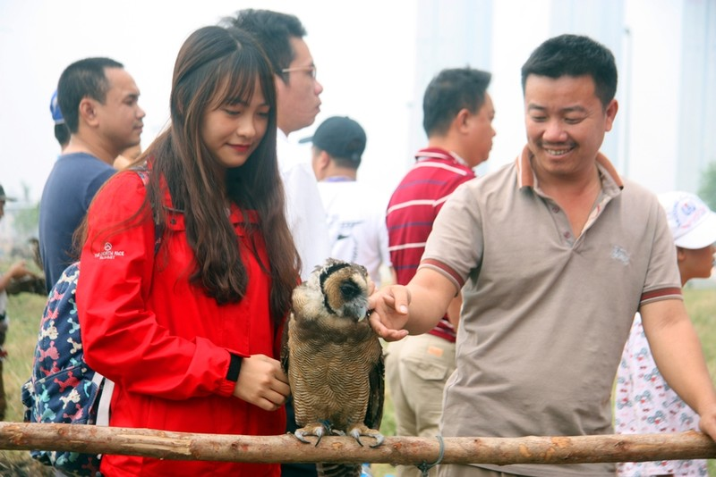 Hào hứng với hội thi chim ở Hà Nội - ảnh 10