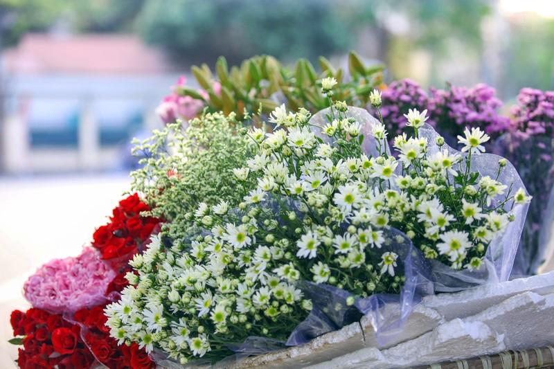 Thiếu nữ Hà thành 'đọ sắc' cùng hoa cúc họa mi - ảnh 15
