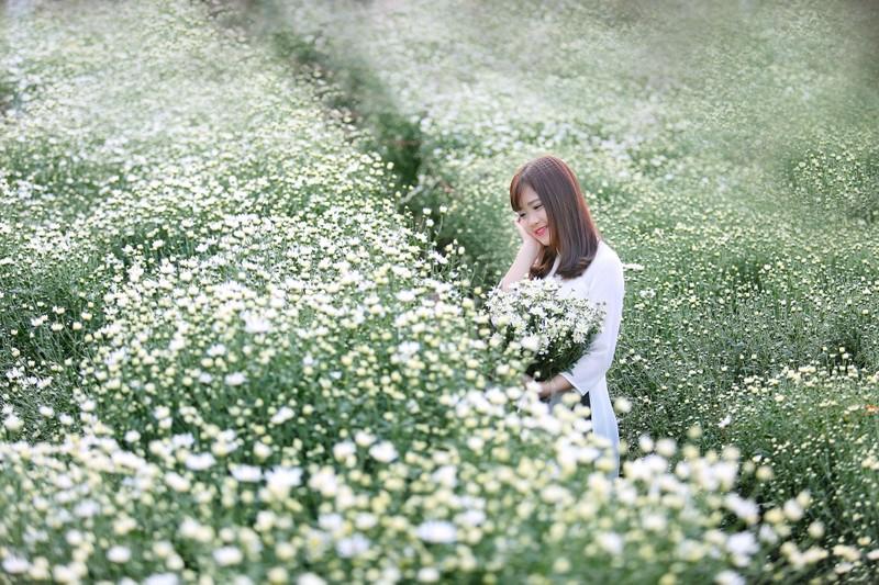 Thiếu nữ Hà thành 'đọ sắc' cùng hoa cúc họa mi - ảnh 10