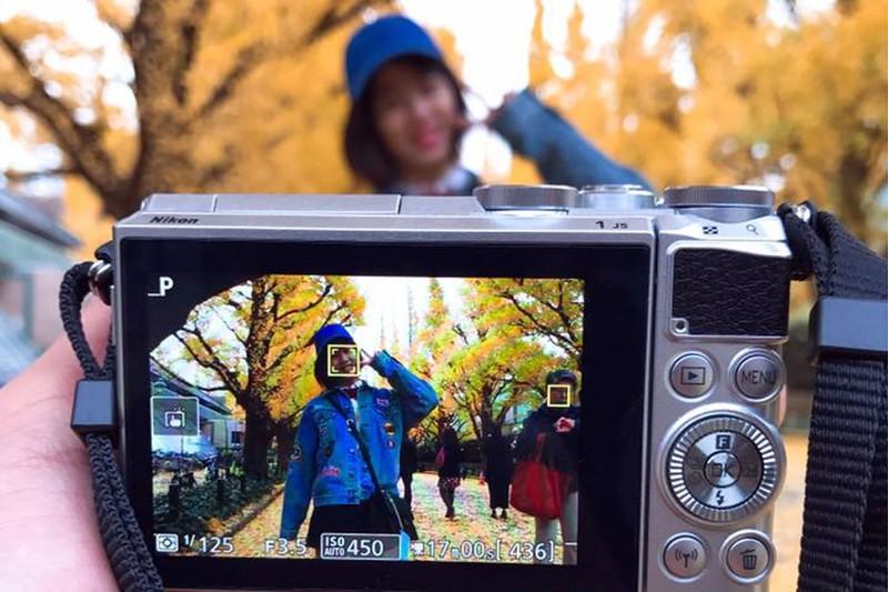Đẹp mê say với mùa lá vàng ở Nhật Bản - ảnh 10