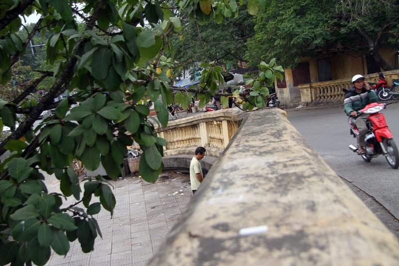Chùm ảnh: Người dân vô tư tè bậy ngoài đường - ảnh 4
