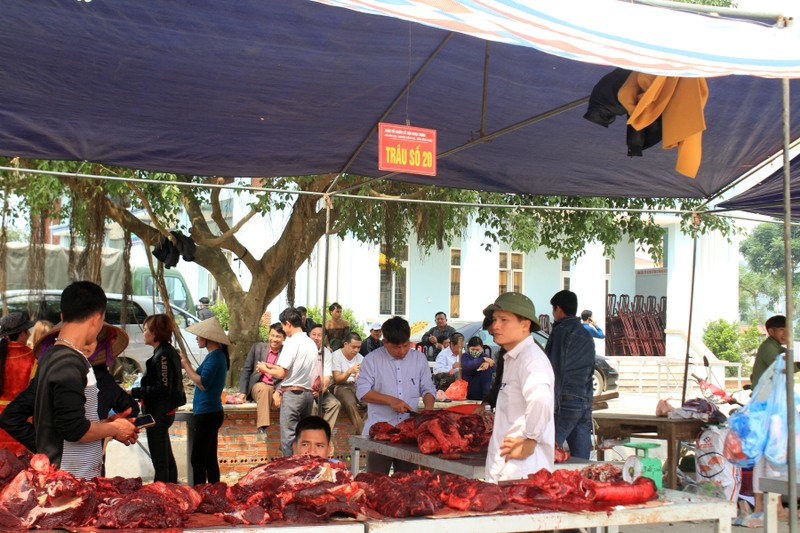 Giá thịt trâu chọi đắt gấp 3 - 4 lần thịt trâu thường - ảnh 7