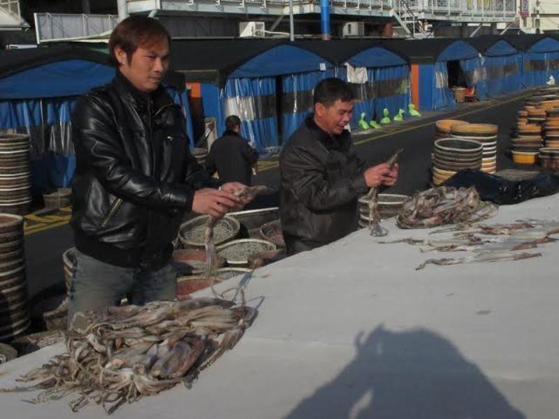 Tạm dừng đưa lao động tại 109 quận, huyện sang Hàn Quốc - ảnh 1