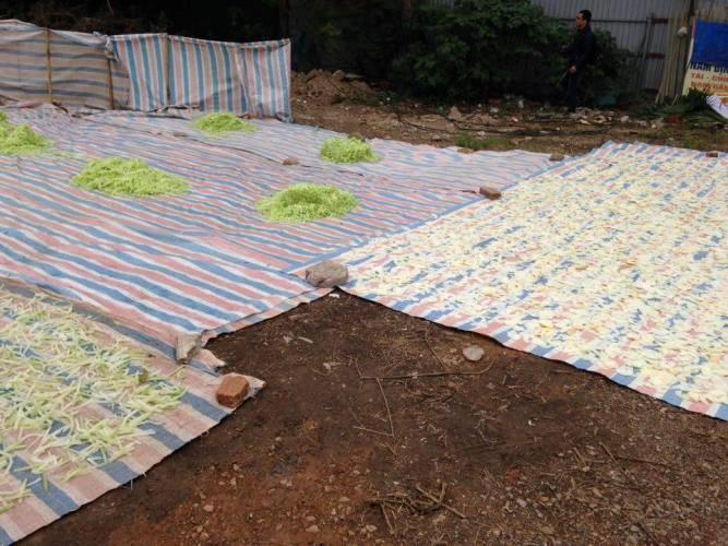 Tiêu hủy 250 kg nguyên liệu mứt bẩn phơi gần khu vệ sinh - ảnh 2