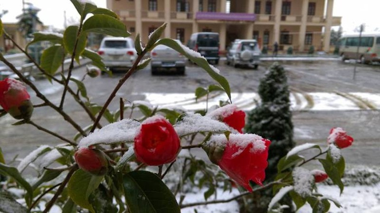 Mưa tuyết, băng giá còn tiếp diễn tại nhiều tỉnh miền Bắc - ảnh 1